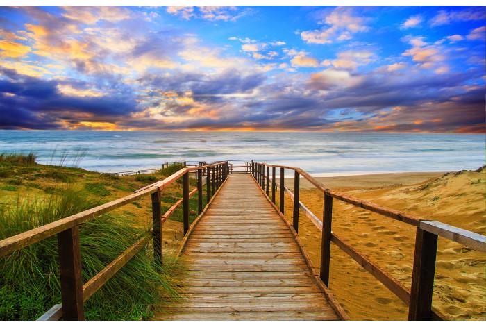 Модульная картина Дорога к морю
